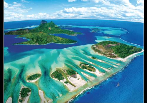Eurographics Puzzles Récif de corail - 1000 pièces