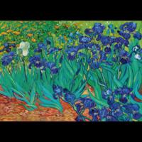 thumb-Vincent Van Gogh - Irissen - 1000 stukjes-1