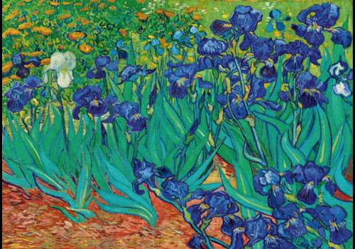 Bluebird Puzzle Vincent Van Gogh - Irises - 1000 pieces