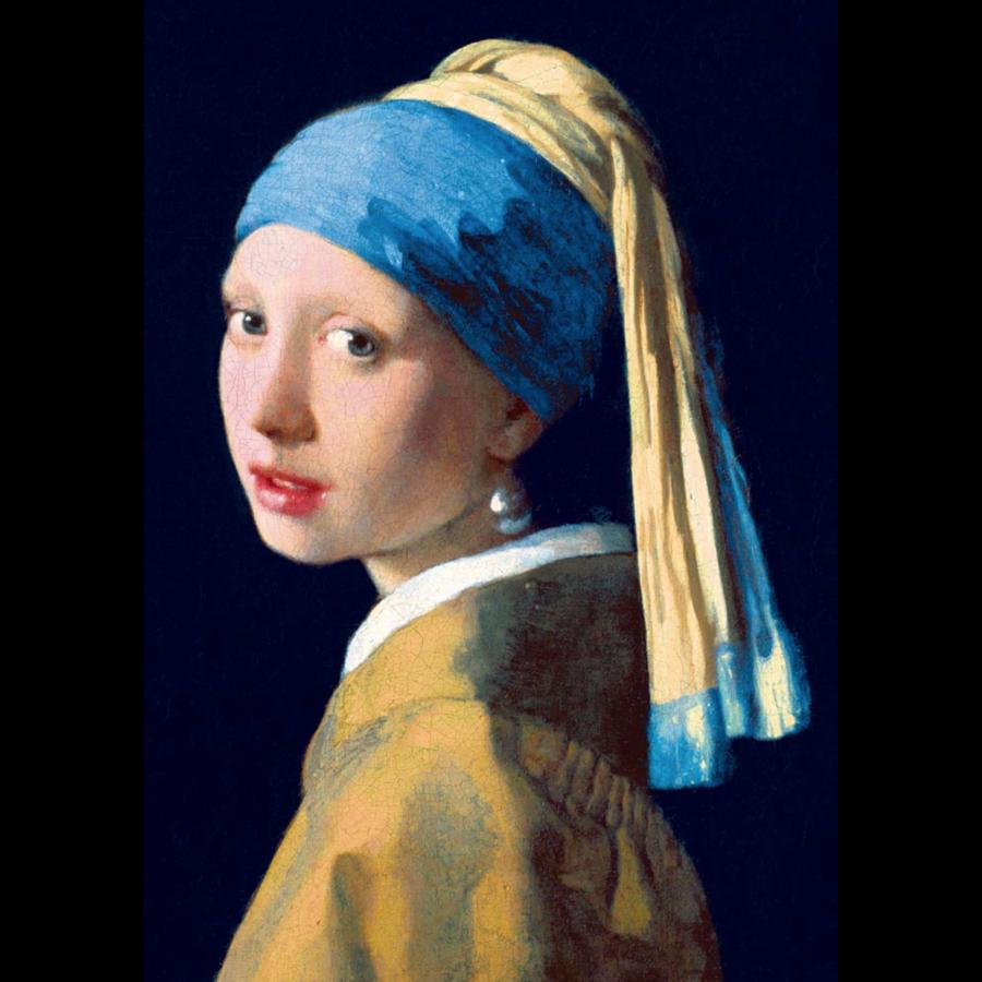 Vermeer - Het meisje met de parel - 1000 stukjes-1