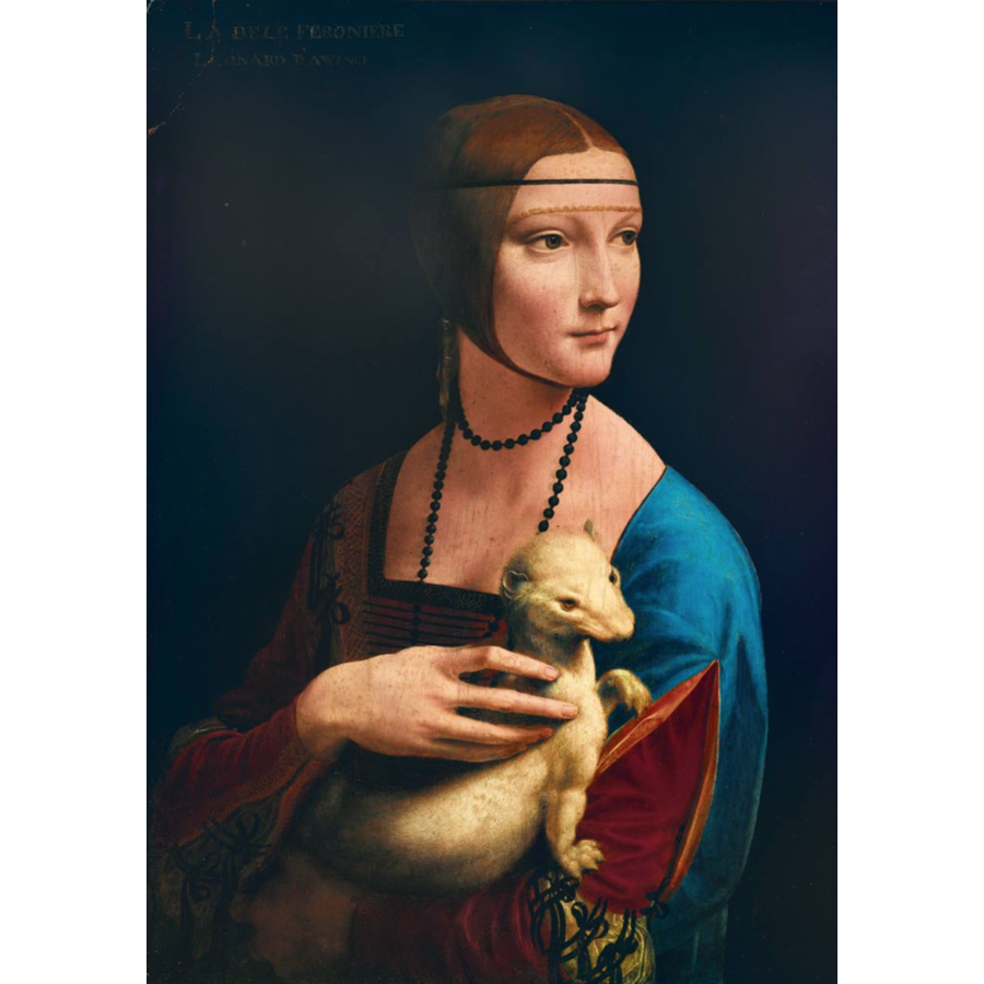 Leonardo Da Vinci - Lady with an Ermine - 1000 pieces-1