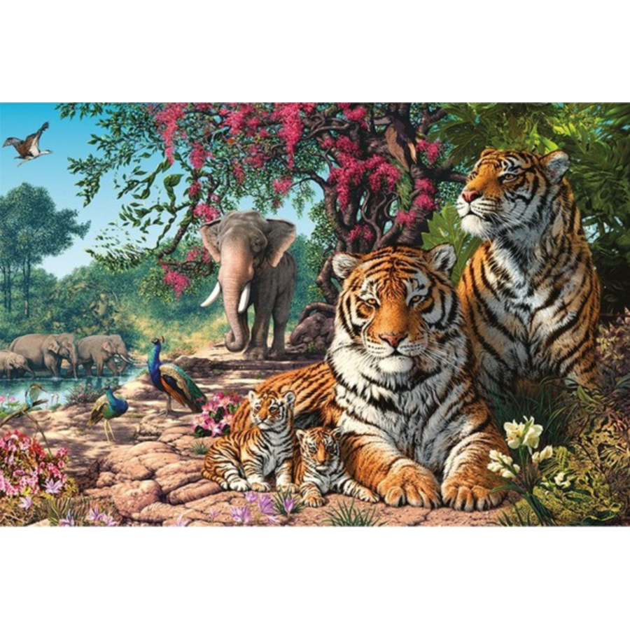 Discoveries - puzzel van 1000 stukjes-2