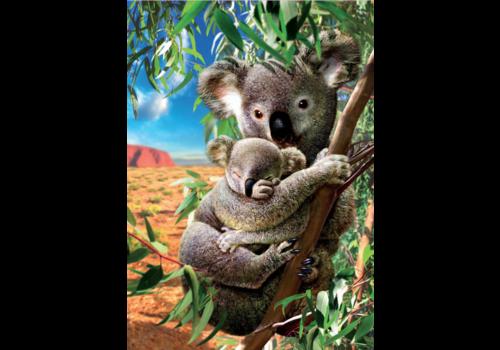Educa De Koala en zijn kleintje - 500 stukjes