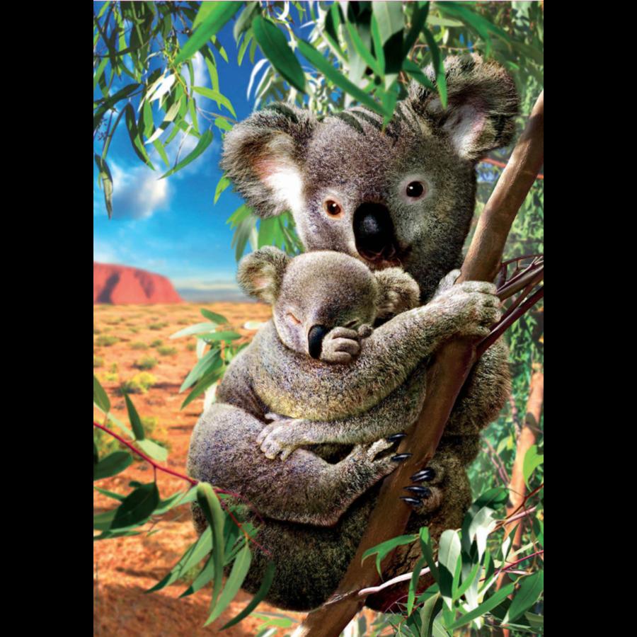 Le Koala et son petit - puzzle de 500 pièces-1