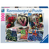 Ravensburger Bloemenpracht in New York - puzzel van  1000 stukjes