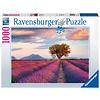 Ravensburger Lavendel velden - puzzel van  1000 stukjes