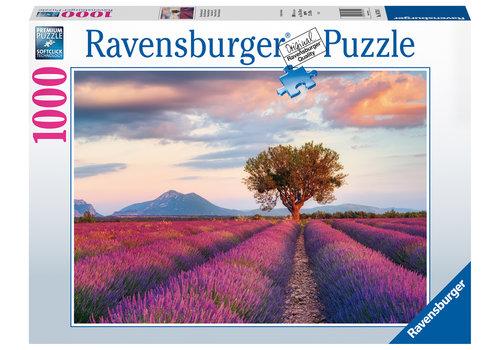 Ravensburger Lavender fields  - 1000 pieces