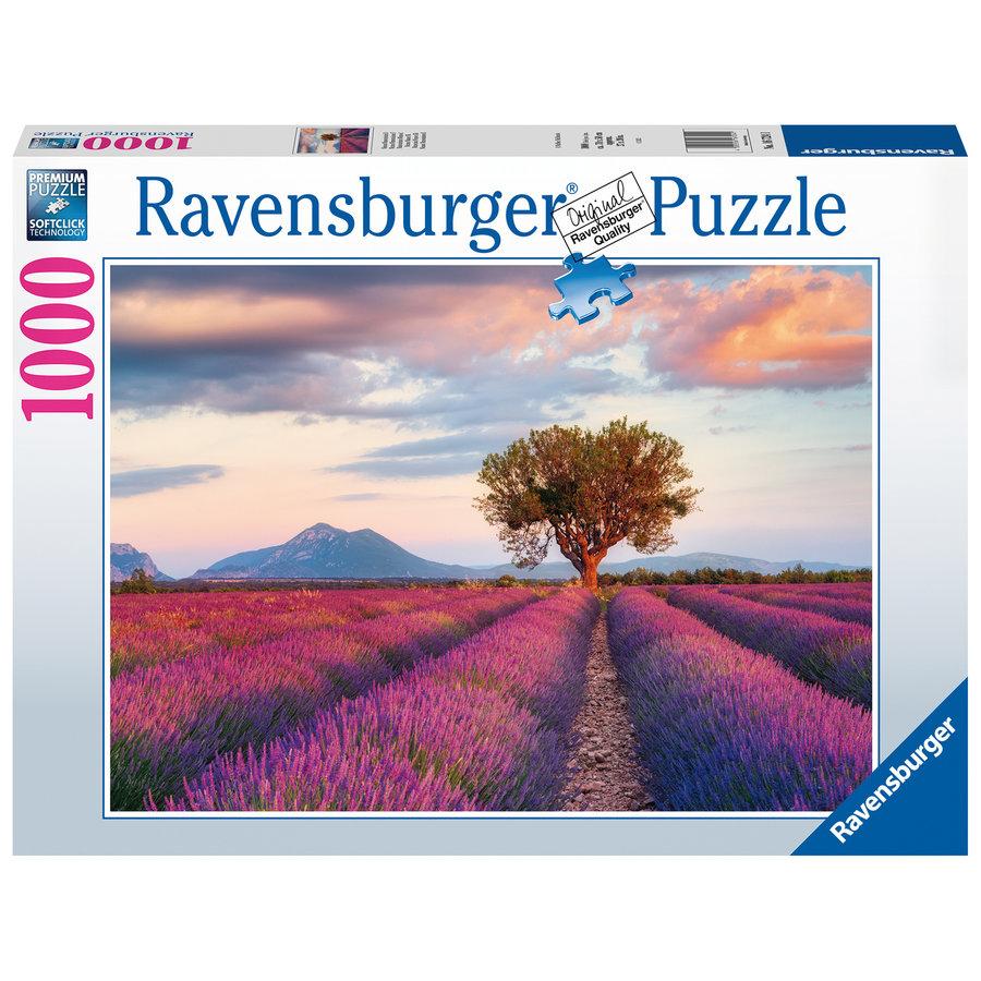 Champs de lavande - puzzle de 1000 pièces-1