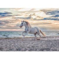 thumb-Paard op het strand - puzzel van 500 stukjes-1
