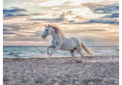 Ravensburger Paard op het strand - 500 stukjes