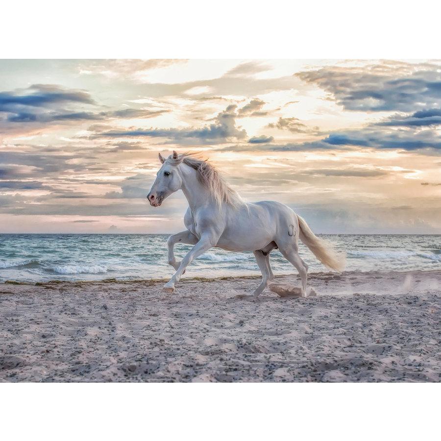Paard op het strand - puzzel van 500 stukjes-1