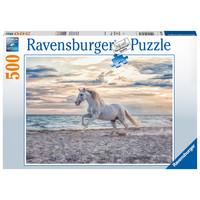 thumb-Paard op het strand - puzzel van 500 stukjes-2