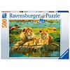 Ravensburger Leeuwen in de savanne - puzzel van 500 stukjes