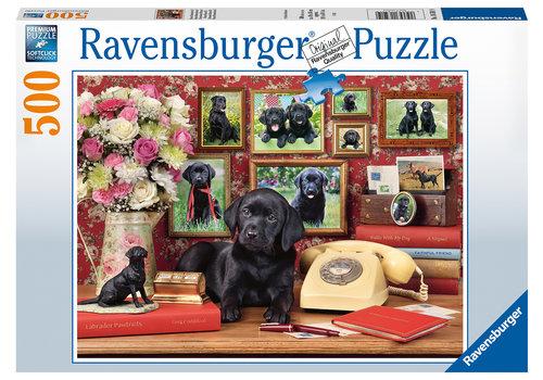 Ravensburger Mijn trouwe vrienden - 500 stukjes