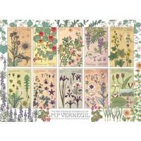 thumb-Botanische kruiden door Verneuil - puzzel van 1000 stukjes-1