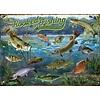 Cobble Hill Verslingerd aan vissen - puzzel van 1000 stukjes