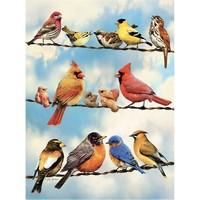 thumb-Oiseaux sur le fil - puzzle de 500 pièces XL-1