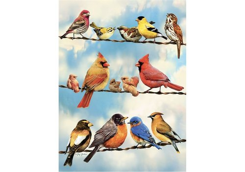 Cobble Hill Birds on a Wire - 500 XL pieces