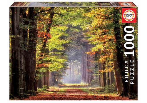 Educa Promenade d'automne - 1000 pièces