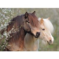 thumb-Mooie paarden - puzzel van 150 stukjes-2