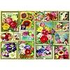 Bluebird Puzzle Flower Pictures - puzzle of 1500 pieces