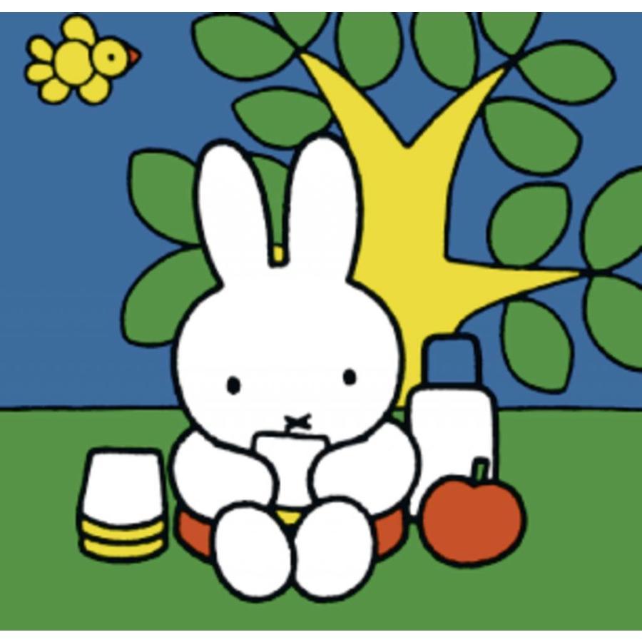 Miffy / Nijntje -  4 puzzles d'enfants de 6 + 9 + 12 + 16 pièces-5