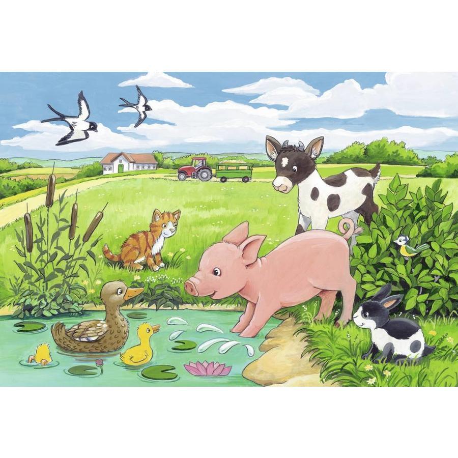 Jonge dieren op het platteland - 2 x 12 stukjes-3