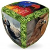 V-Cube V-2 Unieke vogels - Kubus