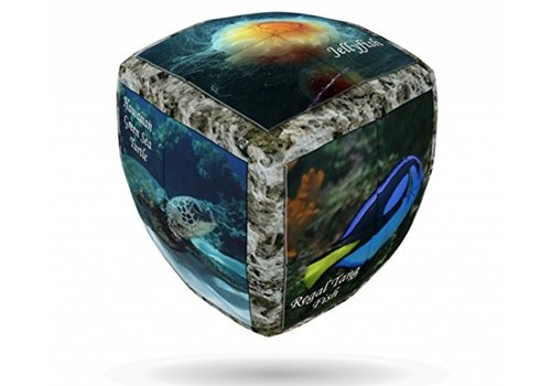 V-2 Sea World - Cube
