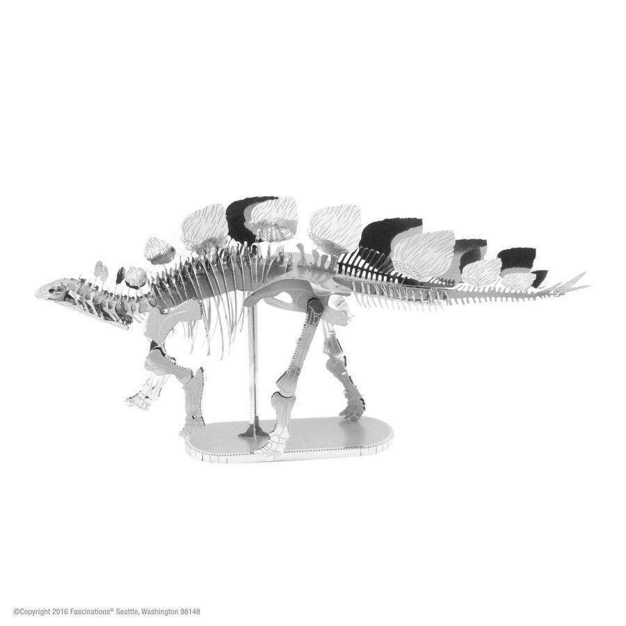 Stegosaurus Skeleton - 3D puzzle-1