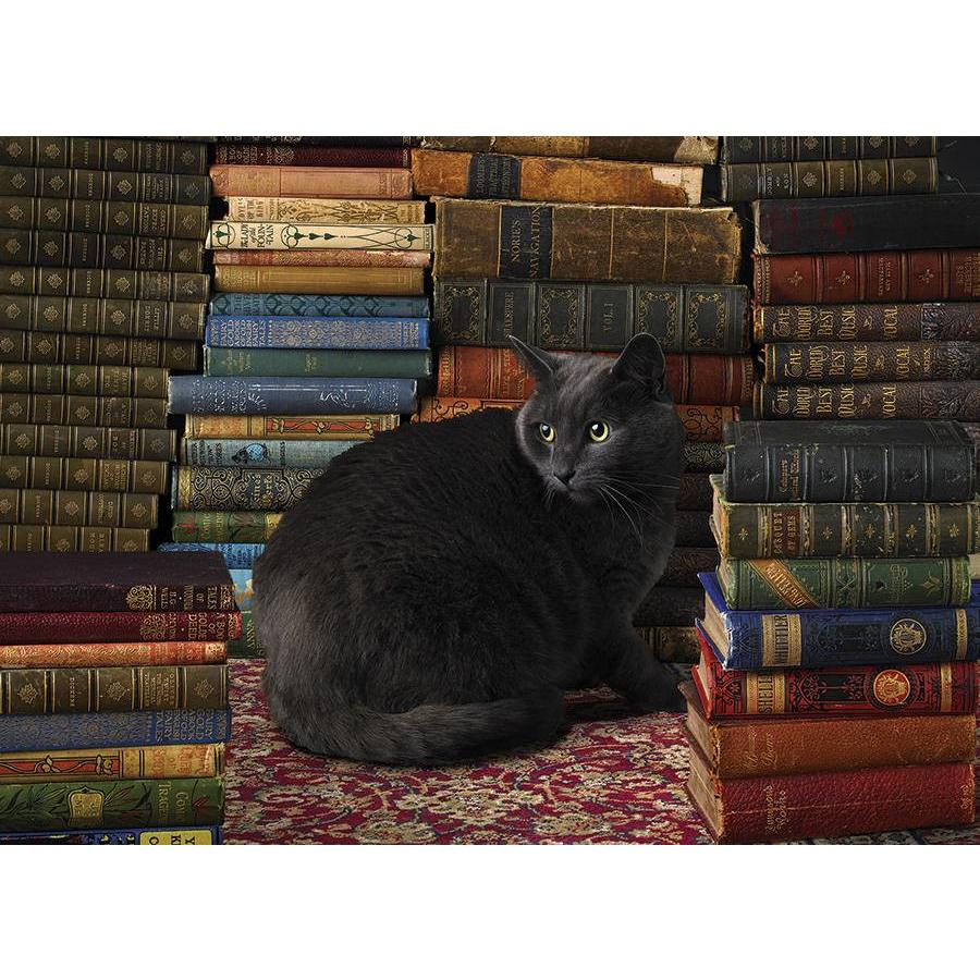 Kat tussen de boeken - 1000 stukjes-1