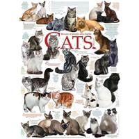 Cat Citations - 1000 pièces