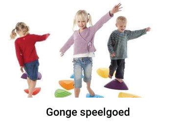 Gonge ontwikkelt en produceert hoog kwalitatief speelgoed voor de motoriek. Geschikt voor kinderen in de kinderopvang en scholen. Maar ook thuis of in de oefenpraktijk kunnen zowel  kinderen als volwassenen hun fysieke vaardigheden aanscherpen.