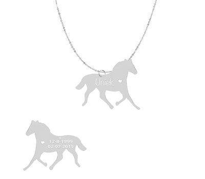 Sieraden met dieren Ketting met hanger Paard