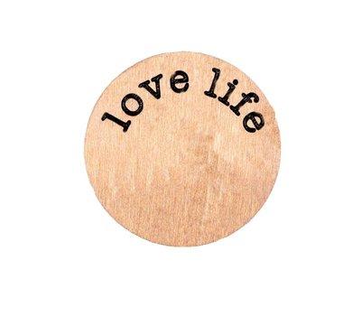 Floating locket  discs Memory locket disk love life rosé goudkleurig large