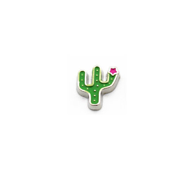 Floating Charms Floating charm Cactus