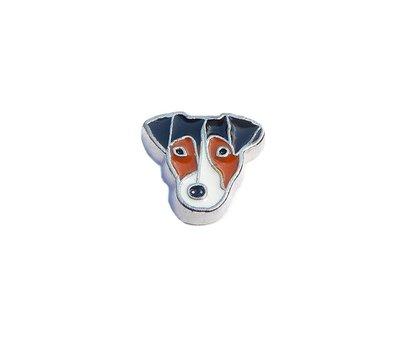 Floating Charms Floating charm Jack Russell Terriër voor de memory locket