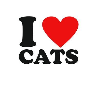Clicks en Chunks | Click I love cats voor clicks sieraden