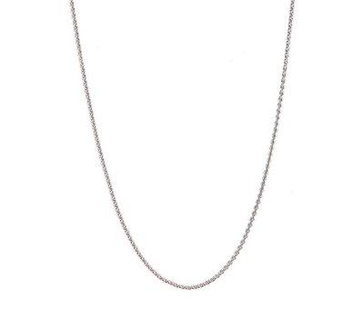 Ketting voor Muntketting Coin ketting Zilverkleurig 80cm van roestvrij staal