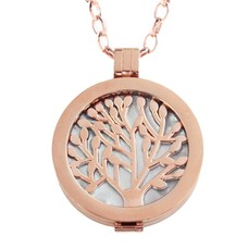 Complete Muntketting Pearl Family Tree rose goudkleurig