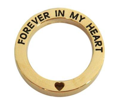 Floating locket  discs Memory locket open disk forever in my heart goudkleurig large