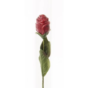 - ROSE, red (dark)