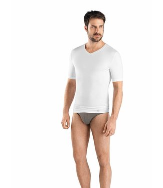 Liam V-Neck 2-Pack T-Shirts (NEW)