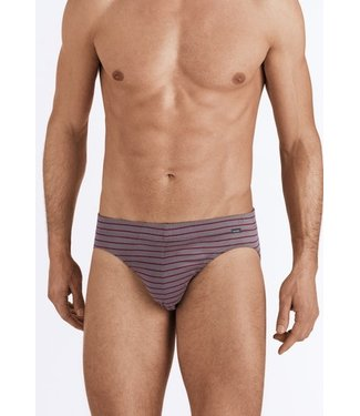 Sporty Stripe Briefs Granite/Bordeaux Stripe (NEW)