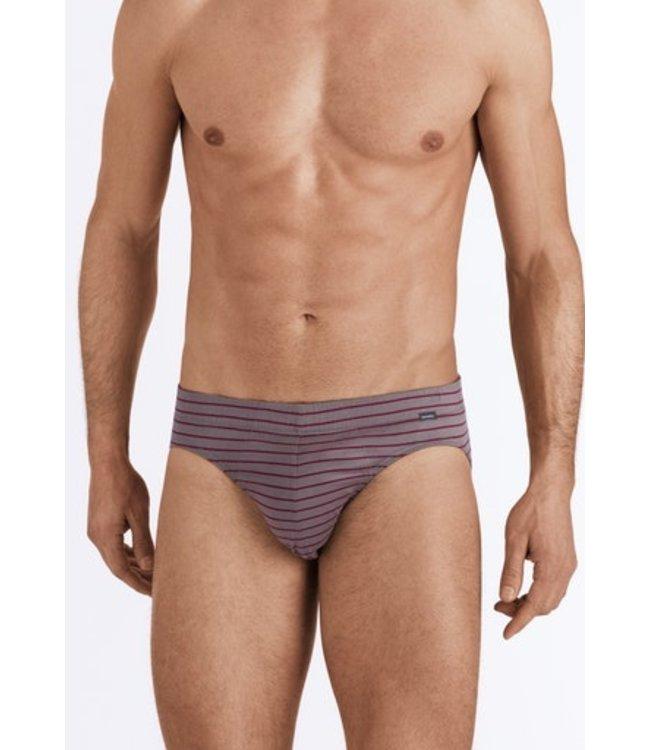 Sporty Stripe Briefs Granite/Bordeaux Stripe (SALE)