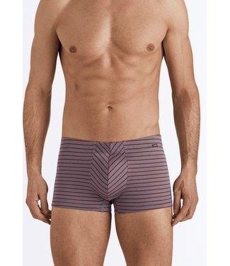 Sporty Stripe Pants Granite/Bordeaux Stripe