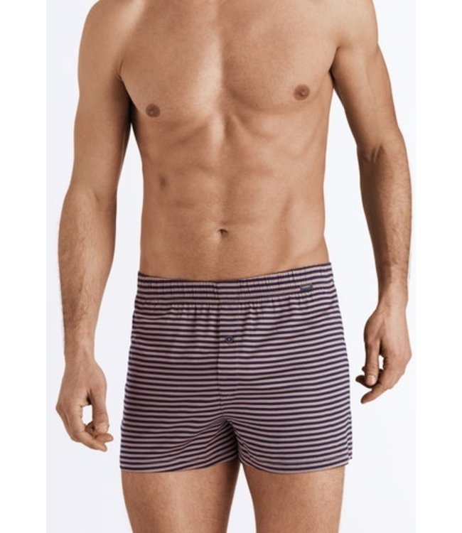 Sporty Stripe Boxers Midnight Taupe Stripe