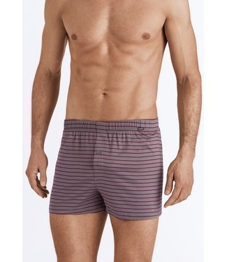 Sporty Stripe Boxers Granite / Bordeaux Stripe (NEW)