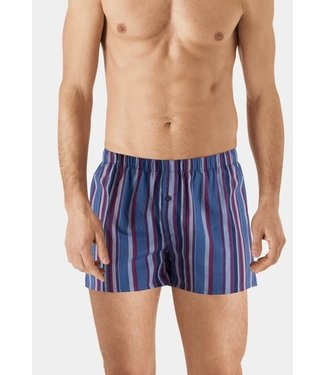 Fancy Woven Boxer Fading Blue Stripe (NEW)
