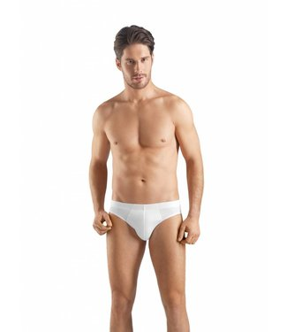 Sea Island Cotton Brief